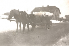 hlavacovi1943orig